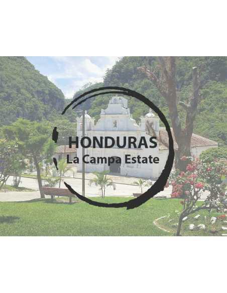 Kawa Honduras SHG La Campa Estate