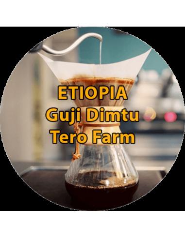 Etiopia Guji Dimtu Tero Farm