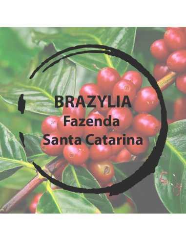 Brazylia Fazenda Santa Catarina