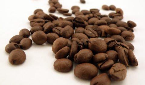 jaką kawę kupić
