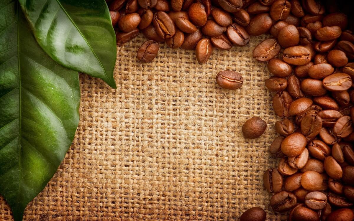 kawa speciality obrazek 10