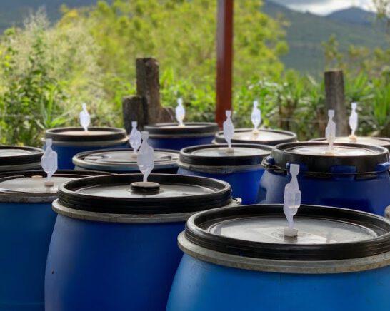 proces kontrolowanej fermentacji kawy