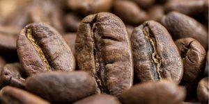 kawa ziarnista w sklepie z kawą